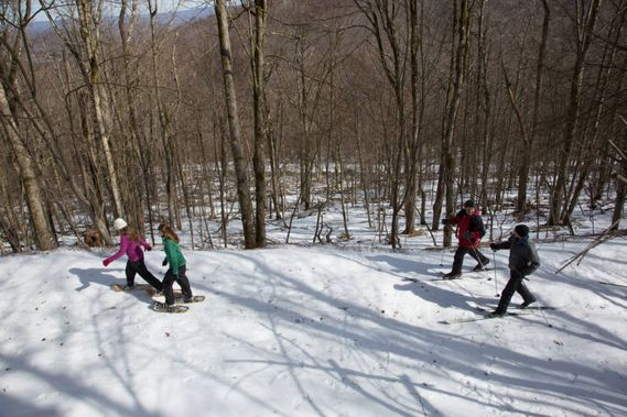 skiers and hikers along a Canaan Valley trail