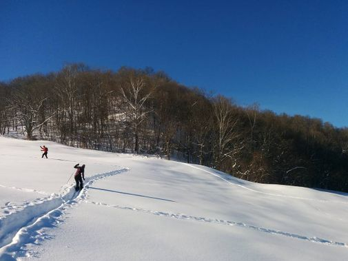 Skiing up the slope on a sunny winter day