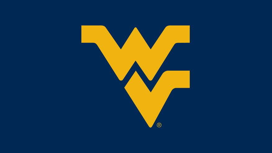 This is an image of the flying WV logo used when a media article has no media accompanying it.