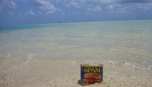 Spam at Beach