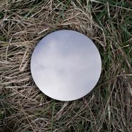 white disk laying in grass