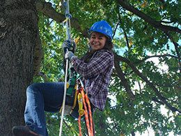 student on ropes in tree