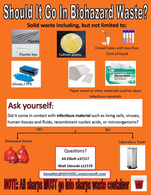 Flyer to help determine if something should go in a biohazard waste container