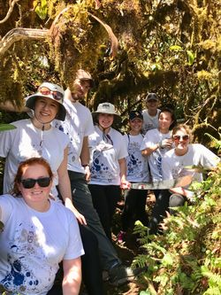 The Model UN students removed invasive species on top of El Junco.