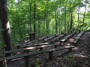 woodland amphitheater