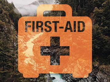 Wilderness first aid graphical representation