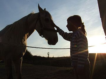 Stock photo protraying kids horsemanship