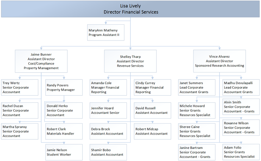 Financial Services Organization Chart
