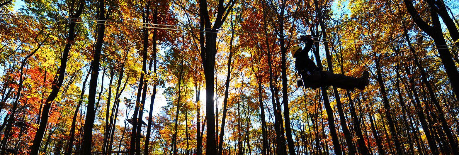 Zip-line Canopy Tour & Zip-line Canopy Tour | Outdoor Education Center | West Virginia ...