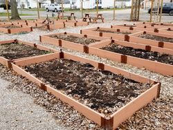 Raised garden beds at the wirt county community hope garden