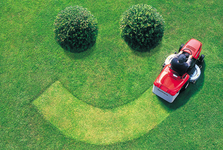 maintaining a new lawn