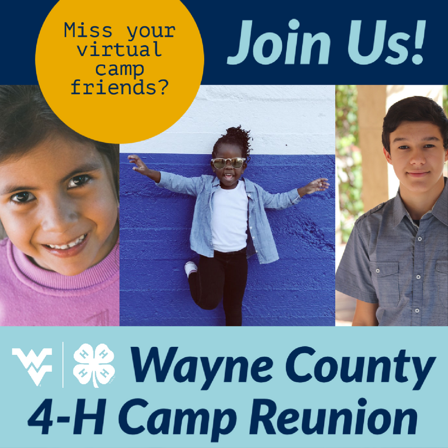 Miss your virtual camp friends-Join Us-Wayne County 4-H Camp Reunion