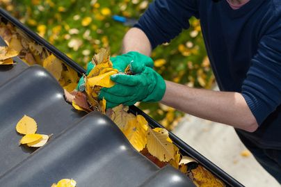 person removing autumn leave from house gutter