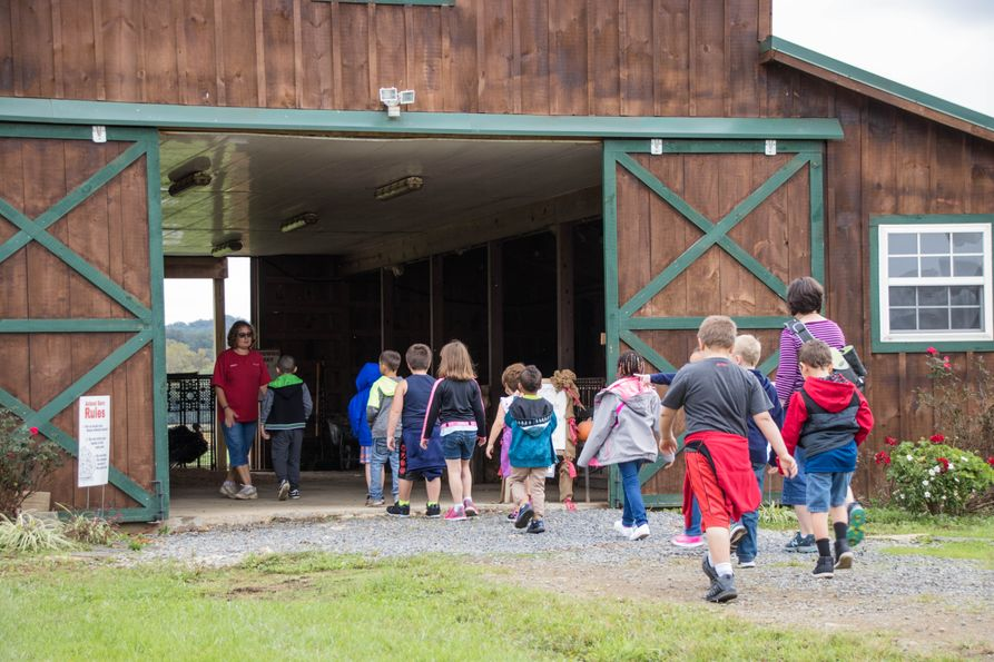 Children on school field trip walking into barn to learn about farm animals