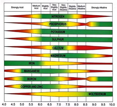 Chart explaining the influence of soil pH on nutrient availability