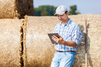 young male farmer leaning on hale bales looking at clipboard