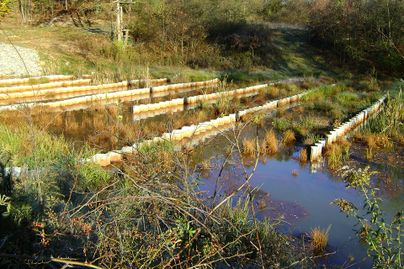 A passive wetland works to treat acid mine drainage.