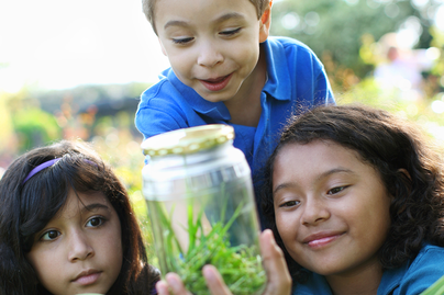 two young girls and one boy looking at a jar with bugs and grass inside