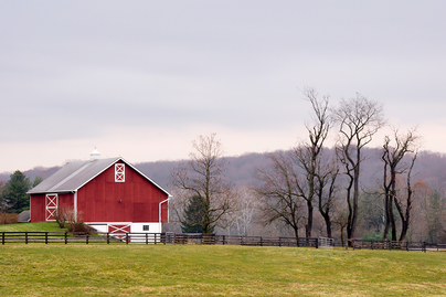 red barn on an overcast winter morning