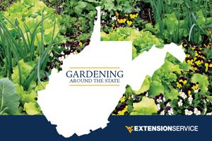"The cover of WVU Extension's 2018 Garden Calendar features a photo of plants with an overlay image of the state of West Virginia. Text inset within the state reads ""Gardening Around the State."""