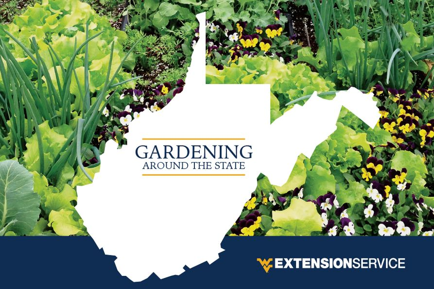 Cover for 2018 Garden Calendar including outline of West Virginia against background of various plants.