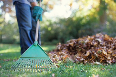 person raking leaves to get lawn and garden ready for fall