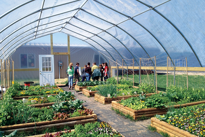 A high tunnel greenhouse.