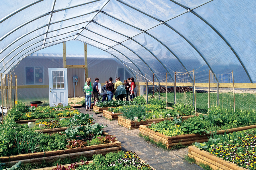 high tunnel with raised beds of garden vegetables, a group of school children in the back corner
