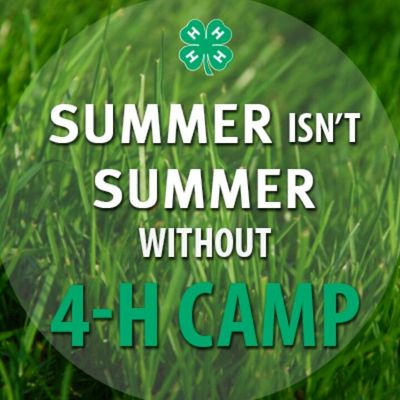Summer Isn't Summer without 4-H Camp on background of grass photo