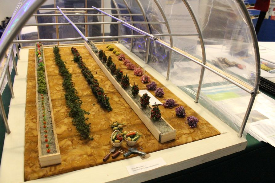 Photo of a table-top high tunnel diorama with model plants inside