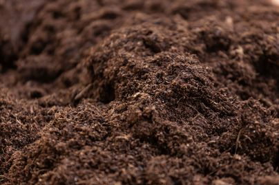 Clean composted soil for cultivation.