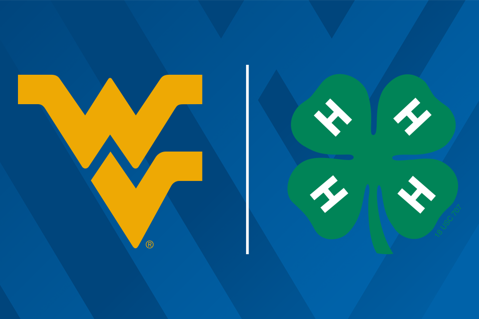Flying WV | 4-H Clover graphics side by side.