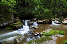 A rural stream shows WVU Extension's involvement with wisely using and protecting the state's Natural Resources.