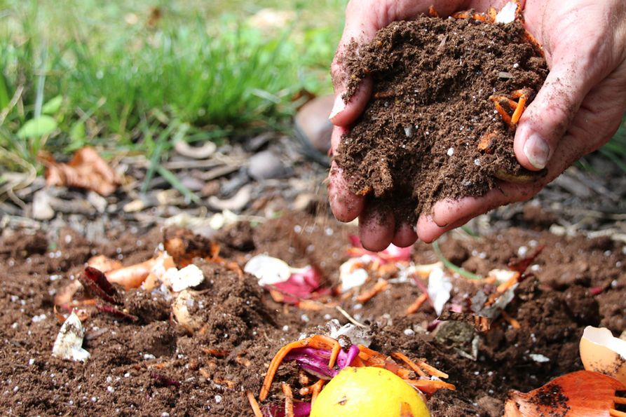 Soil mixed with compost materials