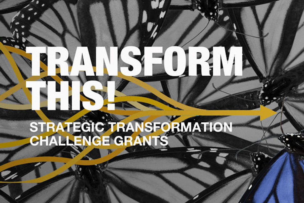 transform this graphic