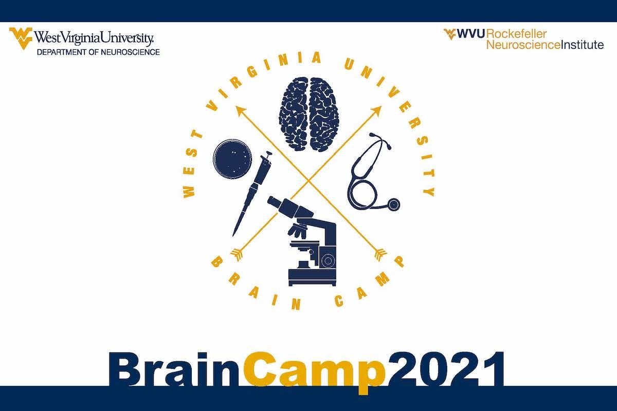 brain camp 2021 graphic