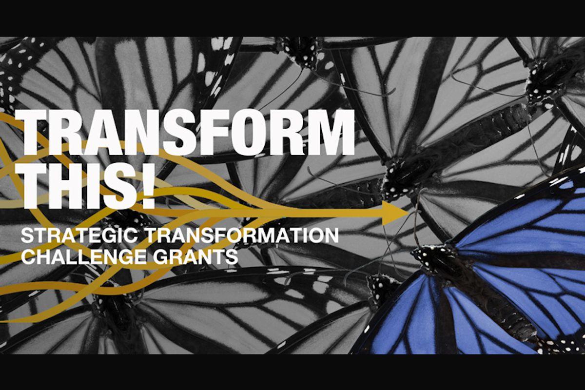 transform this