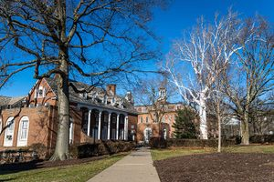 Trees to be removed from E Moore Hall