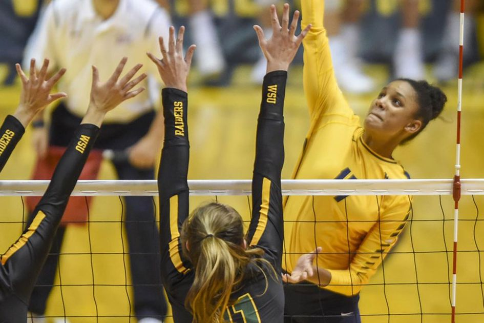 WVU volleyball team in action.