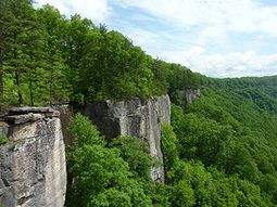 image of cliffs at New River gorge