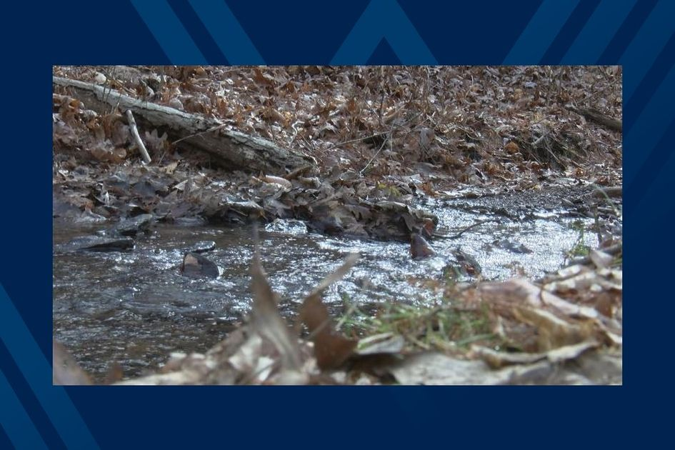 No thumbnail image for WVU experts discuss water quality and soil health