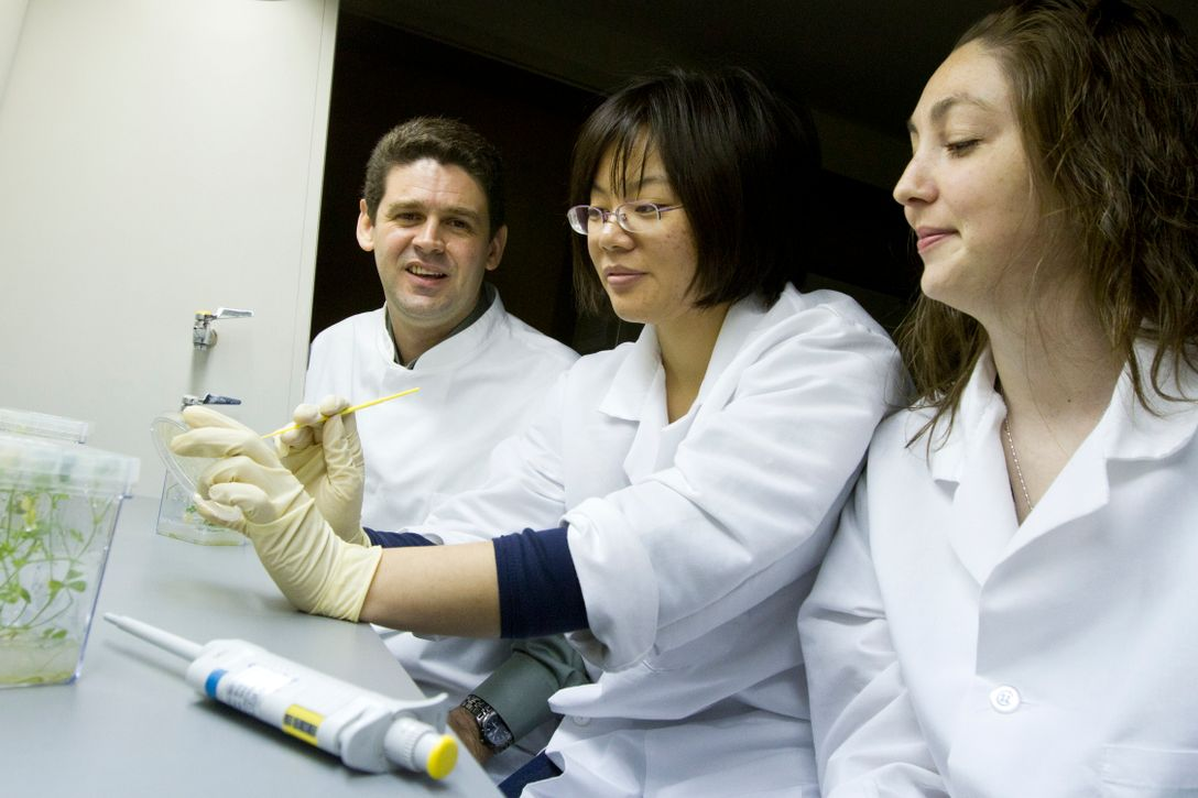 Researchers in lab coats looking at samples.