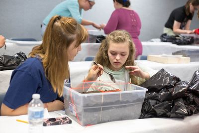 Forensic Camp student Madison Lilly works on a forensic dig to find evidence.