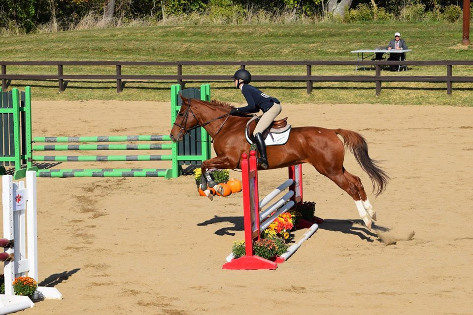 McKenna Coyne competing in the open jumping class.