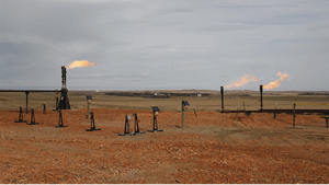 Field of gas wells