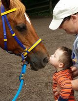 child kissing horse during equine therapy