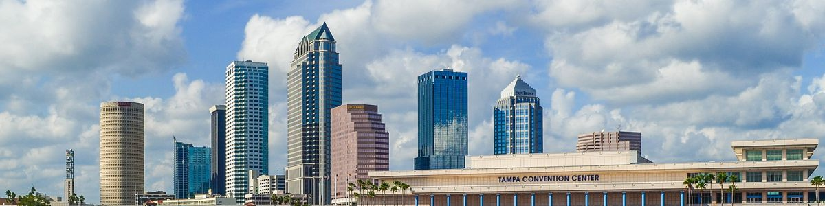 The Tampa Bay city skyline during the day.