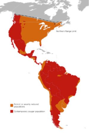 map showing range of mountain lions mostly in the western portion of the US, down through Central America and throughout most of South America