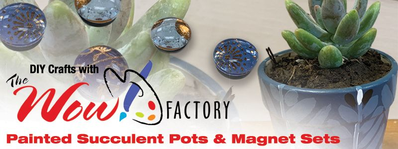 Wow Factory Crafts Succulent pot and magnet sets