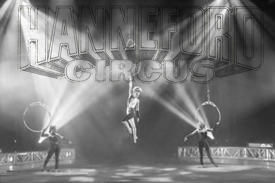 Hanneford Circus photo of aerialist